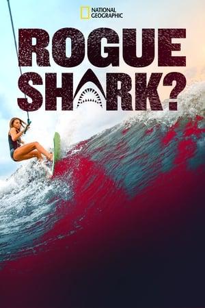 Rogue Shark?              2021 Full Movie