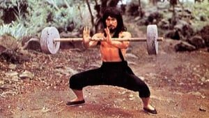 movie from 1979: Cantonen Iron Kung Fu
