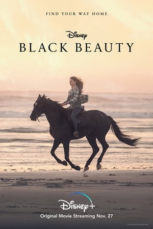 Image Black Beauty