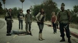 Zombie Apocalypse [2011]