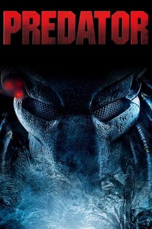 Predator streaming