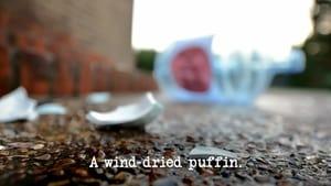 A Wind-Dried Puffin