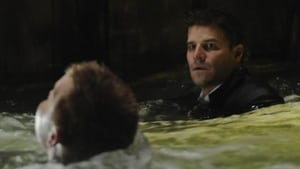 Bones - The Hero In the Hold episodio 14 online