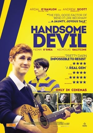 Handsome Devil (2017) WEBRIP FRENCH