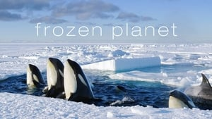 poster Frozen Planet