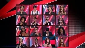 The Voice Season 3 :Episode 9  The Best of the Blind Auditions