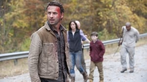 Serie HD Online The Walking Dead Temporada 2 Episodio 13 Al lado del fuego que muere