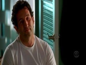 Online CSI: Miami Temporada 5 Episodio 9 ver episodio online A la una, a las 2, a las 3