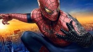 Spider-Man 3 Movie