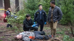 Grimm sezonul 4 episodul 16