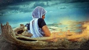 ദി ക്രാബ്
