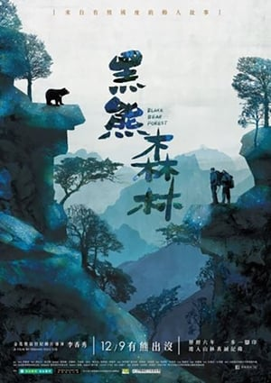 Black Bear Forest