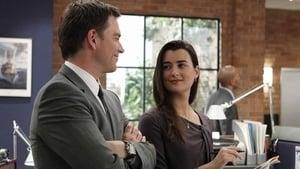 NCIS Season 8 : Two-Faced