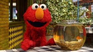 Sesame Street Season 46 :Episode 32  Sesame Ocean