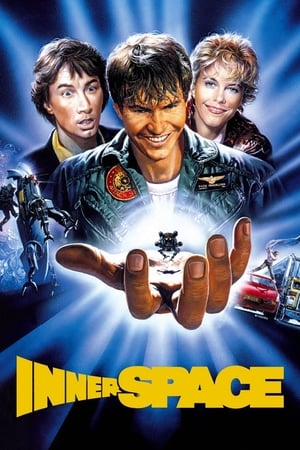 Viagem Insólita (1987) WEB-DL 720p Dual Áudio – Torrent Download