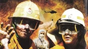 2012 : Terre brûlée