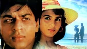 Kabhi Haan Kabhi Naa (1994) Hindi BluRay 480P 720P Gdrive