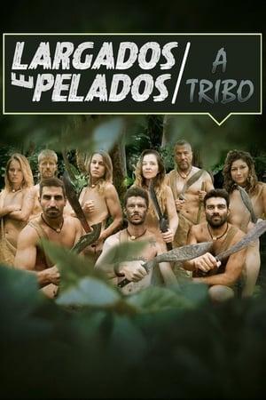 Largados e Pelados: A Tribo 1ª à 5ª Temporada Torrent, Download, movie, filme, poster
