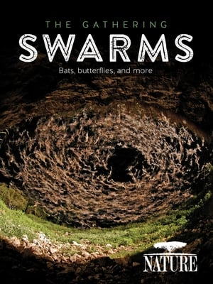 The Gathering Swarms-Jay O. Sanders