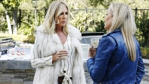 The Real Housewives of Orange County: 14×2