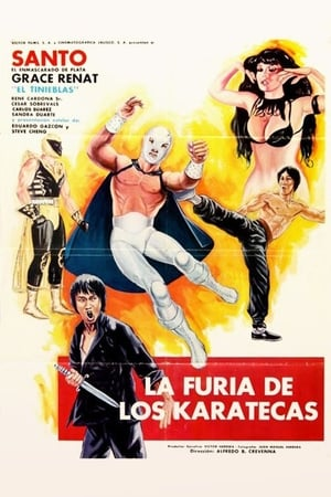 The Fury of the Karate Experts (1982)