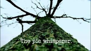 The Pie Whisperer