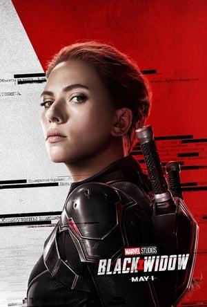 შავი ქვრივი / Black Widow