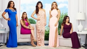 The Real Housewives of New Jersey, Season 8 picture