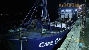 Deadliest Catch 11×18