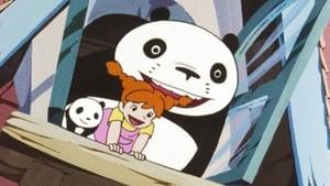 Panda! Go Panda!: Rainy Day Circus