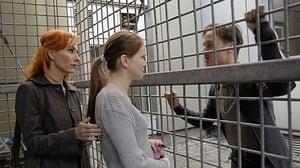 Scene of the Crime Season 39 : Episode 13