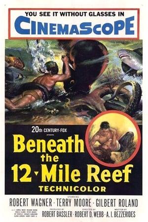 Beneath the 12-Mile Reef