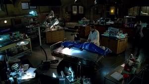 Fringe – Grenzfälle des FBI: 2 Staffel 5 Folge