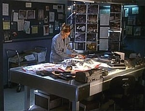 HD series online CSI: Crime Scene Investigation Season 3 Episode 22 Play with Fire