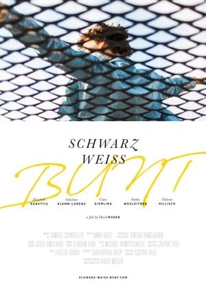 Schwarz, Weiss, Bunt (2020)