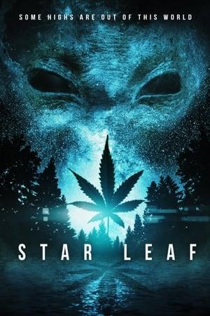 Image Star Leaf