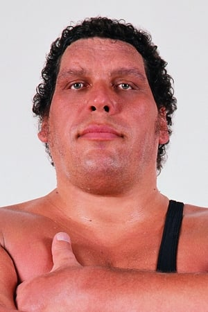André the Giant isFezzik