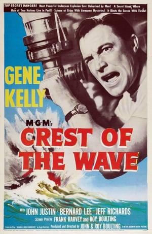 Poster Seagulls Over Sorrento (1954)