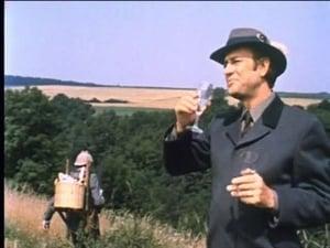 Arsène Lupin, der Meisterdieb: 2×10