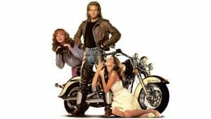 A szerelem Harley Davidsonon érkezik