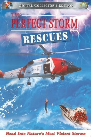 The Perfect Storm: Rescues