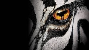 مشاهدة مسلسل 2015 Zoo أون لاين مترجم
