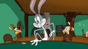 New Looney Tunes Season 1 Episode 17