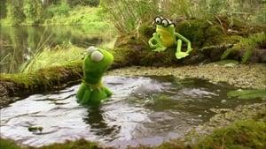 La prima avventura di Kermit 2002 Streaming Altadefinizione