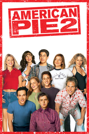American Pie 2 (2001) is one of the best movies like The Big Short (2015)