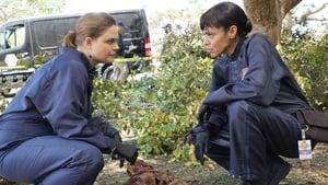 Bones Season 12 Episode 4 Watch Online Free