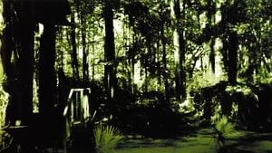 La cosa del pantano (1982) HD 1080p Latino