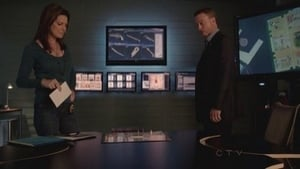 CSI: NY 9×7
