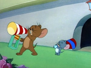 Tom And Jerry: 2×5
