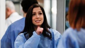 Grey's Anatomy Season 16 :Episode 14  A Diagnosis